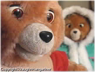 Teddy Ruxpin* with a soft rubber nose. -Image-
